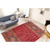 Tapis ASSA Multicolor / Rouge 160cm x 230cm1