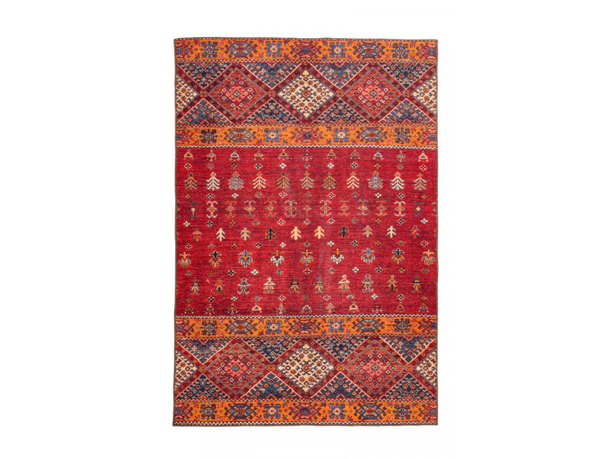 Tapis ASSA Multicolor / Rouge 200cm x 290cm3